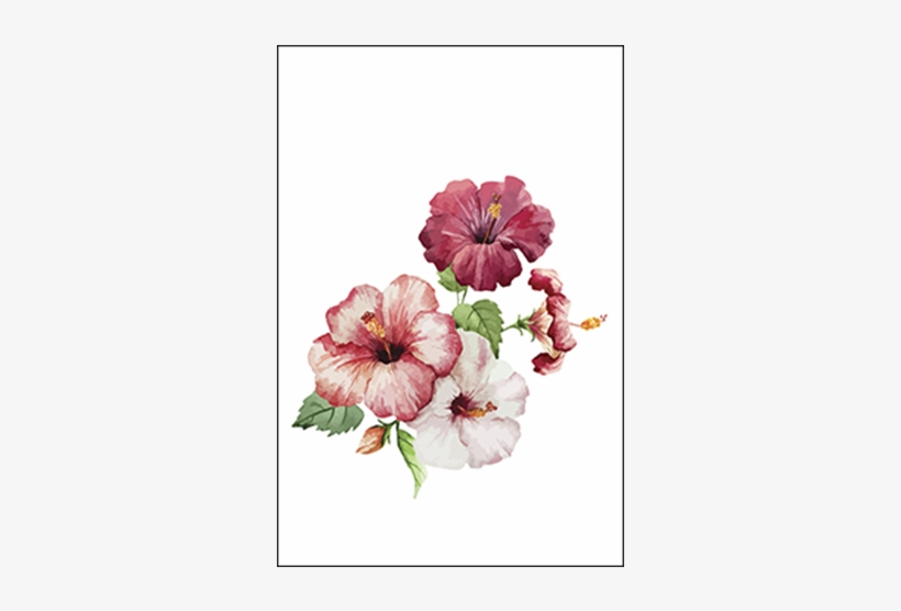 Hibiscus Flowers Hibiscus Painting Transparent Png 600x600