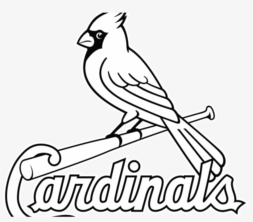 St Louis Cardinals Wallpaper St Louis Cardinals Coloring Pages Transparent Png 1024x768 Free Download On Nicepng