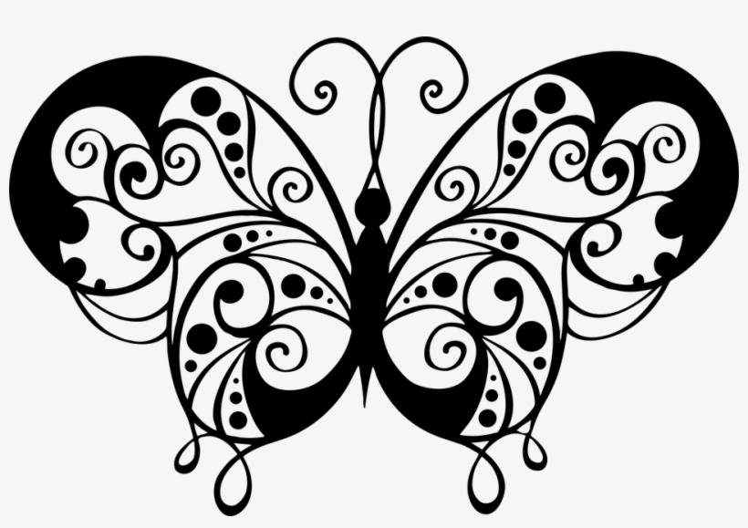 Animal Butterfly Decorative Flourish Flying Insect Gambar