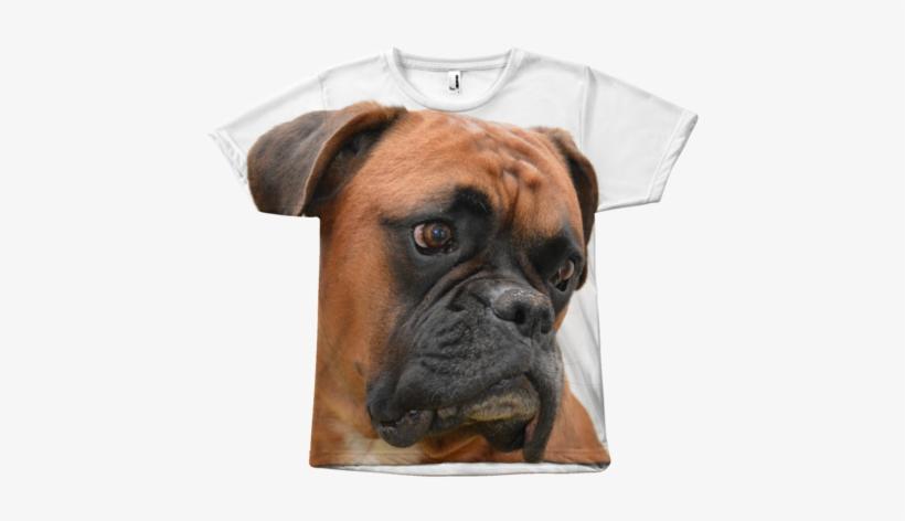 Boxer Dog Transpa Png