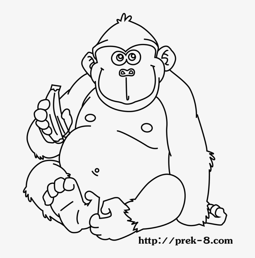 jungle safari coloring pages | Images of Animal Coloring Pages ... | 828x820