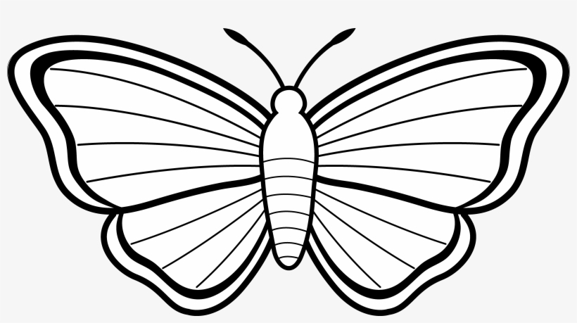 Free Butterfly Coloring Page | Parents | 459x820