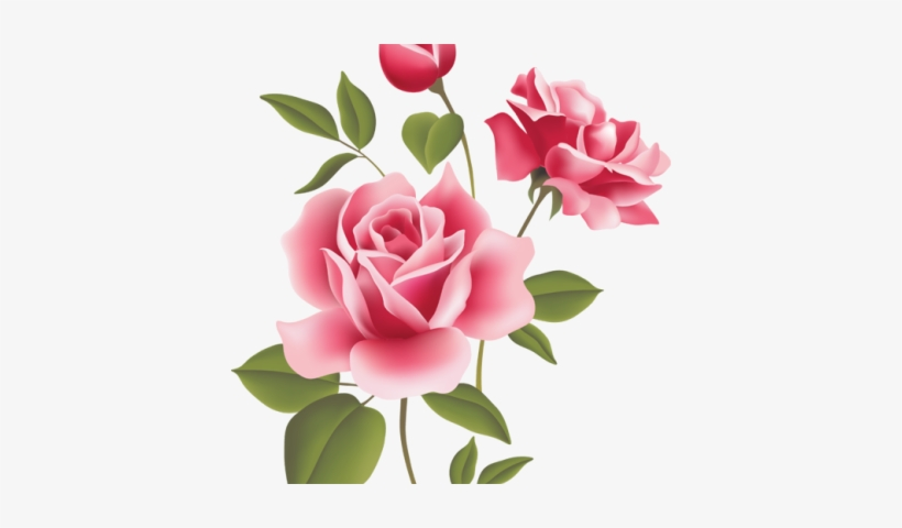 Bunga Pink Png Bunga Mawar Pink Png Transparent Png 400x400