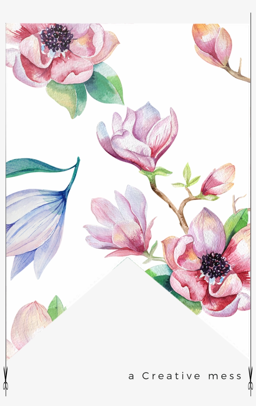Magnolia Png Download Transparent Magnolia Png Images For Free