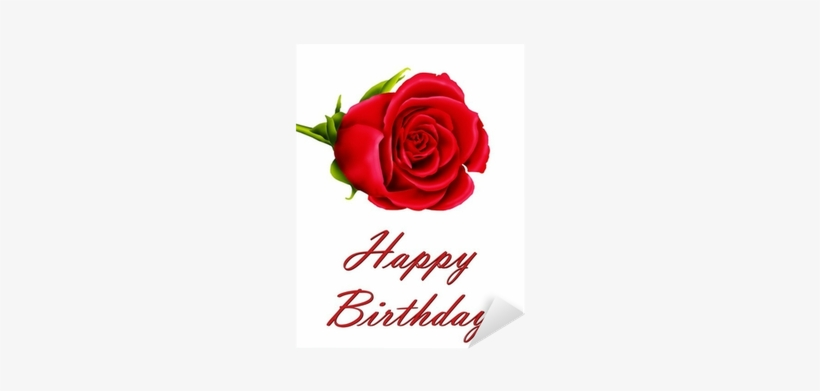 Birthday Card With A Single Red Rose Sticker Pixers Birthday Flowers Single Red Roses Transparent Png 400x400 Free Download On Nicepng