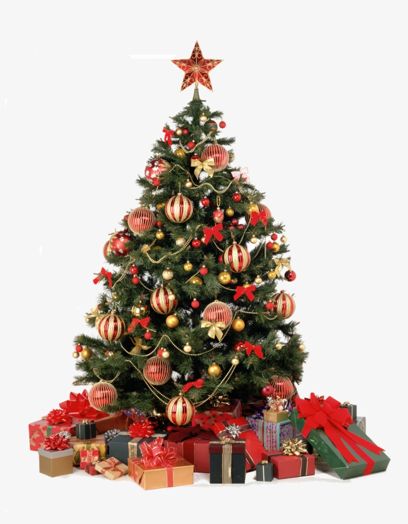 Pubblicato Christmas Tree Decorated In Red And Gold Transparent Png 1293x1600 Free Download On Nicepng