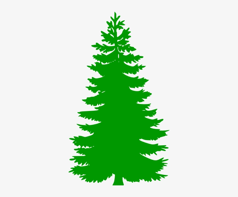 winter pine trees clipart pine tree clip art1 png - pine tree vector png  transparent png - 348x598 - free download on nicepng  nicepng
