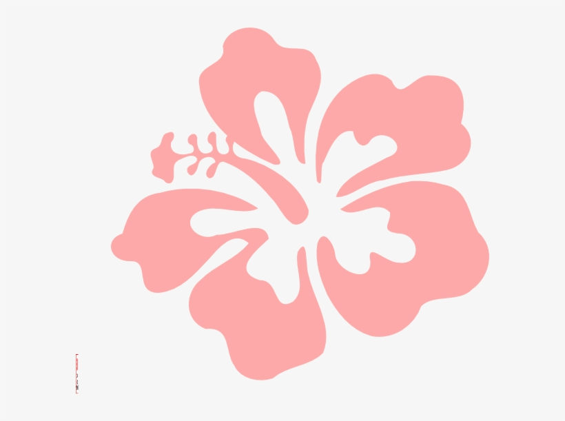 photograph relating to Printable Hawaiian Flowers known as Coral Vector Printable - Hawaiian Bouquets Clear