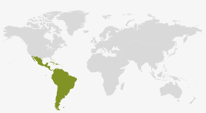 Latin America And Caribbean Map Latin America And Caribbean On World Map Transparent Png 1400x532 Free Download On Nicepng