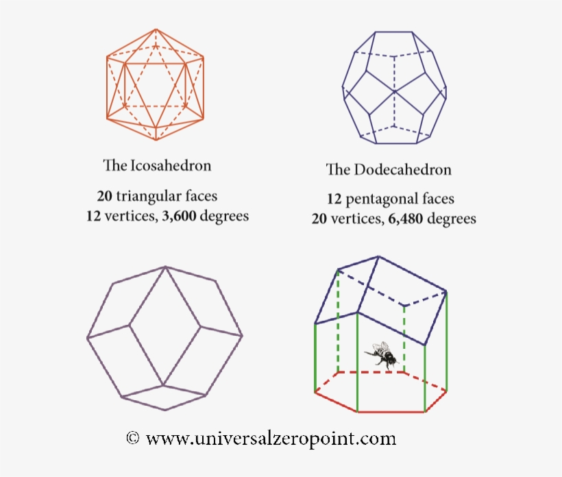 The Icosahedron Can Be Placed Inside The Dodecahedron