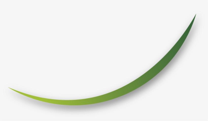 Lineas Png Vector Imagui Lineas Verdes Png Pictures