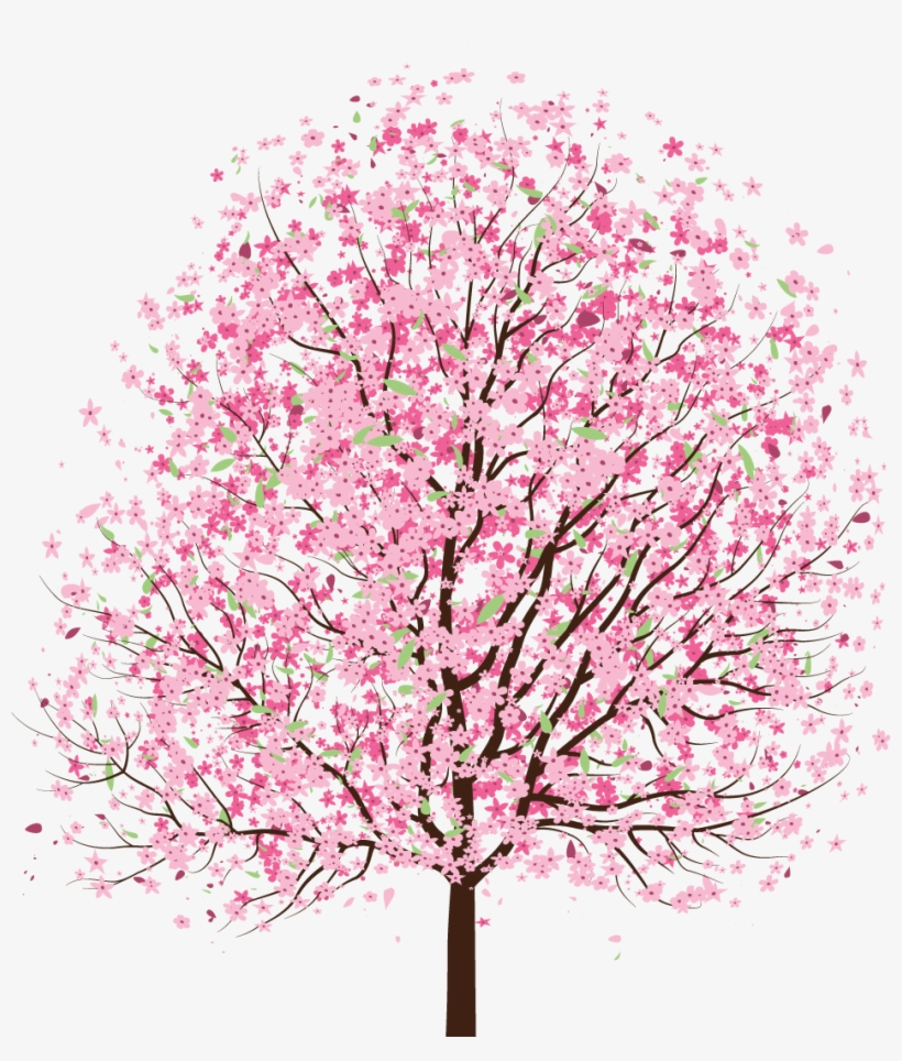 Blossom Tree Drawing: Simple Cherry Blossom Tree Drawing Transparent PNG