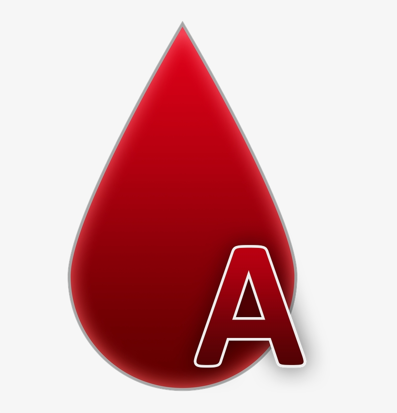Blood Group,blood,and,blood Donation,a Drop Of Blood,free