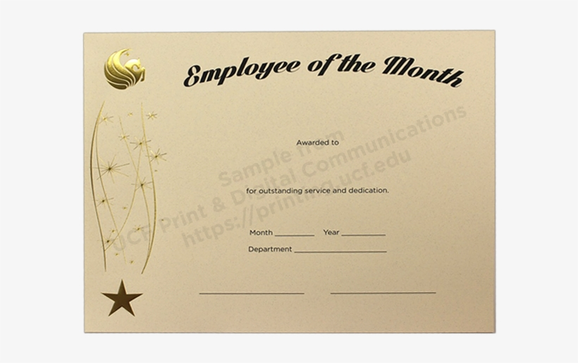 graphic about Printable Employee of the Month Certificates identified as Pin Staff Of The Thirty day period Award Certification Template - Absolutely free