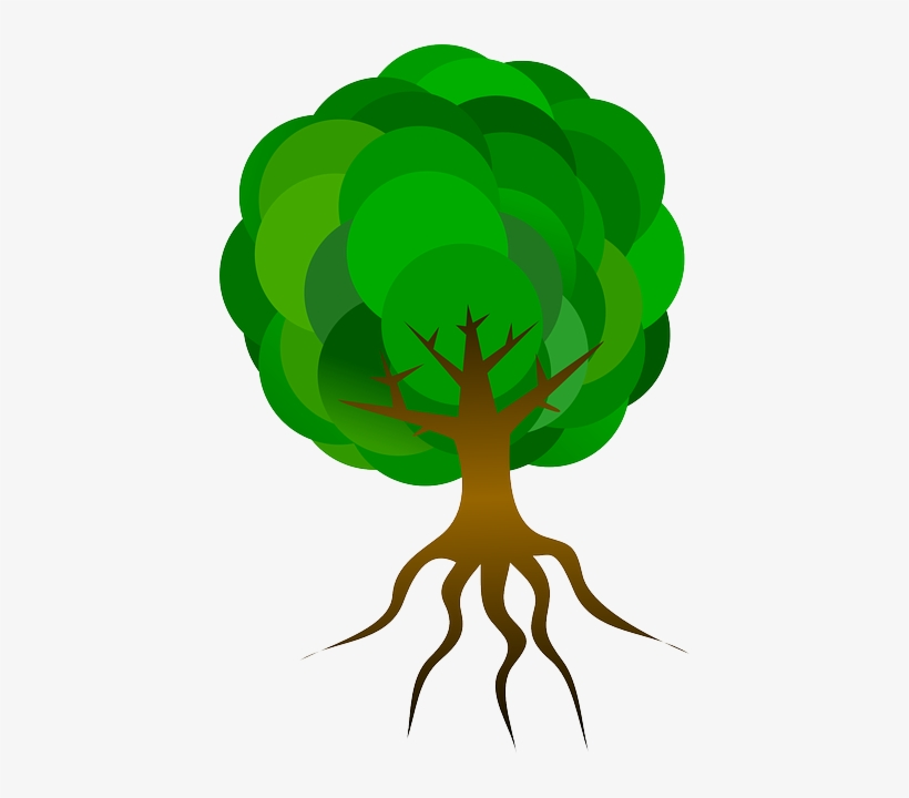 Cartoon Tree With Roots Transparent Png 424x640 Free Download On Nicepng Find & download free graphic resources for trees cartoon. cartoon tree with roots transparent png