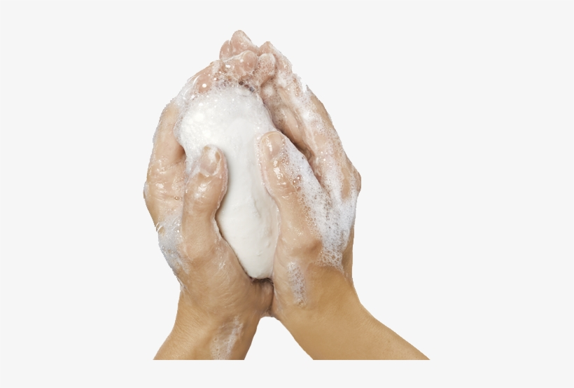 Hands Washing Hands Soap Png Transparent Png 415x474 Free