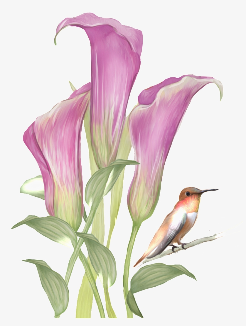 This Graphics Is Hand Drawn Flowers And Birds Pattern Watercolor