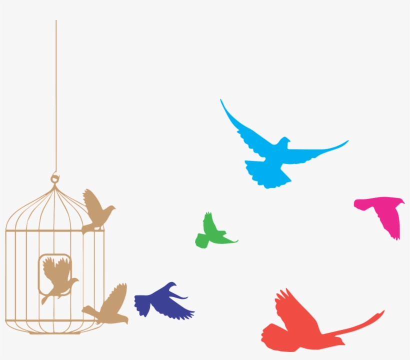 Birds Flying From Cage Clipart Birds Flying Out Of Cage Transparent Png 1280x1063 Free Download On Nicepng