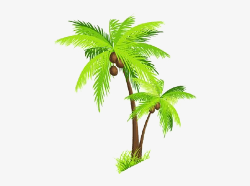 Free Png Palm Tree Png Images Transparent Coconut Tree Clipart Png