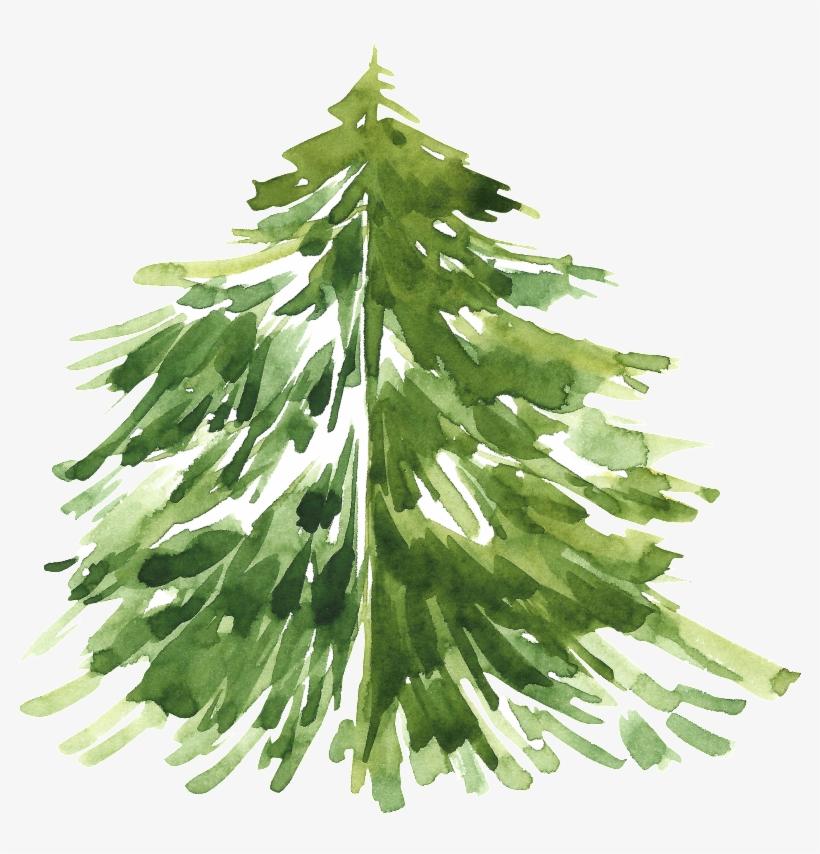 Pintado Cartoon Christmas Tree Png Transparente Aquarelle