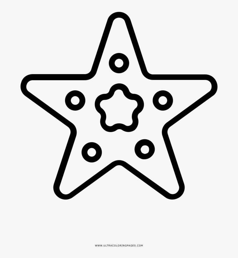 Dibujo De Estrella De Mar Para Colorear Estrella Con Bordes