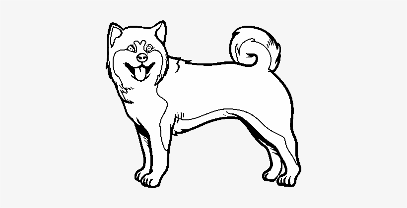 Akita Dog Coloring Page Shiba Inu Coloring Pages Transparent Png 600x470 Free Download On Nicepng
