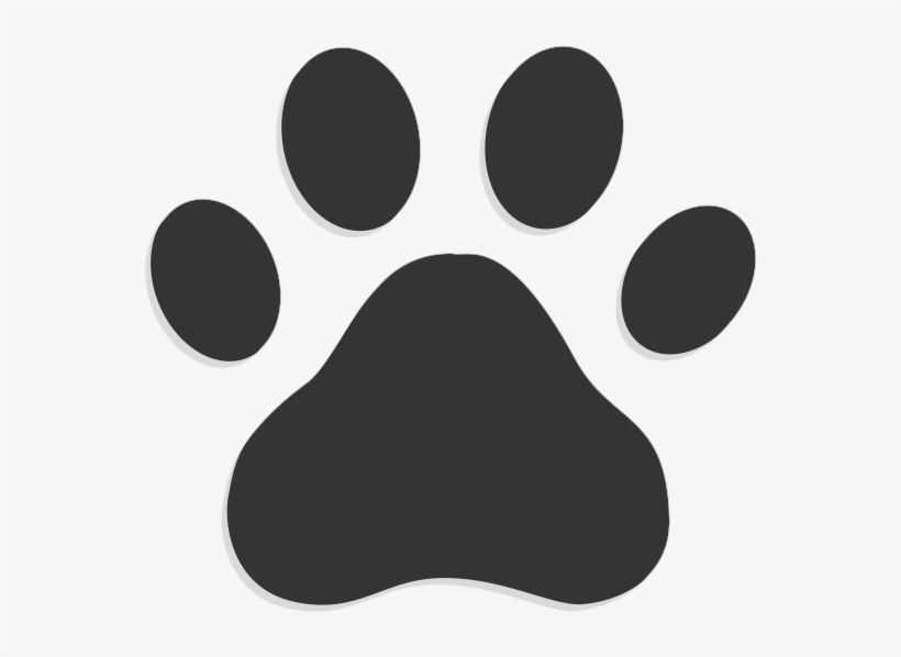 Dog Walking Paw Print Icon Transparent Background Transparent Png 800x800 Free Download On Nicepng Also, find more png clipart about animal clipart,frame clipart,clipart design. dog walking paw print icon