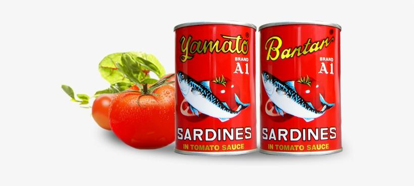 sardine 01 kaleng ikan sarden transparent png 590x324 free download on nicepng sardine 01 kaleng ikan sarden