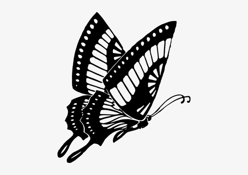 229 Free Butterfly Vector Clip Art Public Domain Vectors Flying Butterfly Black And White Transparent Png 440x500 Free Download On Nicepng