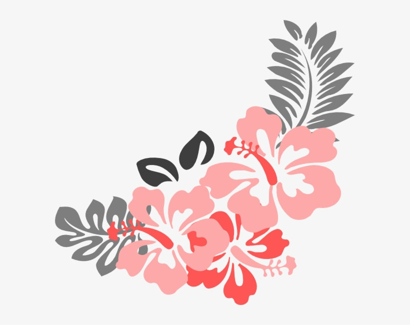 Hibiscus Flower Png Border Coral Flowers Clip Art Transparent Png