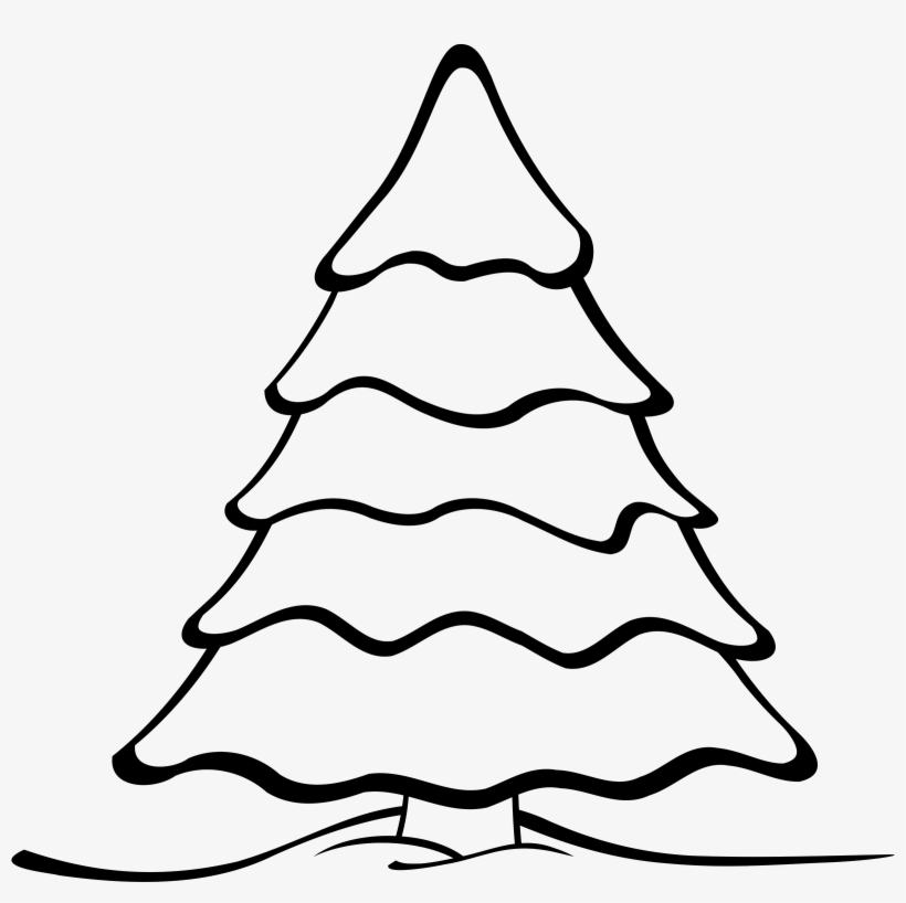 evergreen tree clipart black and white christmas tree black and white transparent png 800x760 free download on nicepng evergreen tree clipart black and white