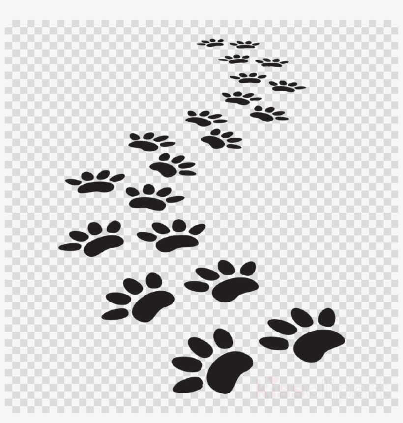 Vector Dog Paw Prints Clipart Dog Cat Tiger Paw Print Trail Png Transparent Png 900x900 Free Download On Nicepng Download this free png photo for you design work. vector dog paw prints clipart dog cat