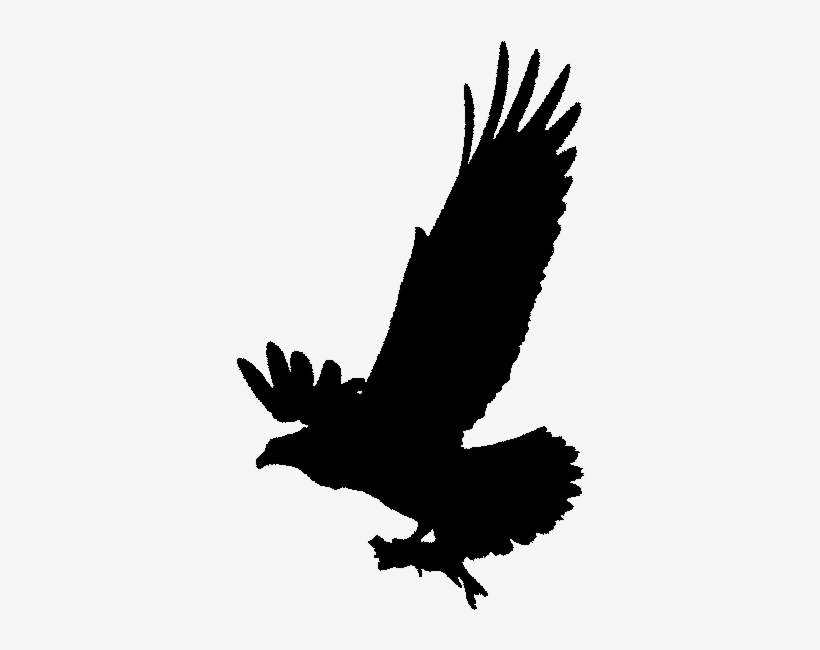 Love Birds Clipart Black And White Osprey Clip Art Black And White Transparent Png 579x597 Free Download On Nicepng