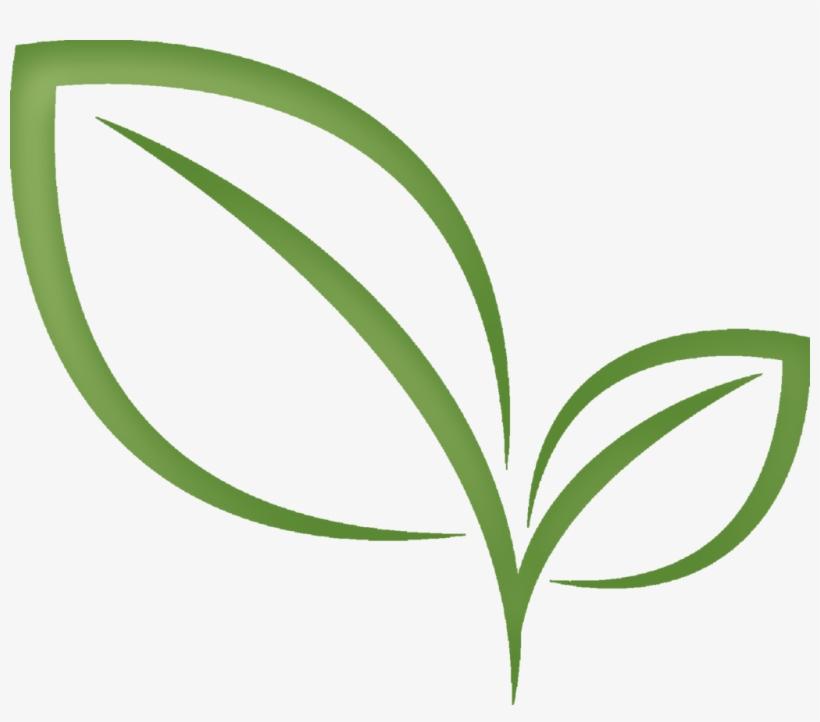 Tea Leaf Png - Tea Leaf Clipart Transparent Transparent PNG