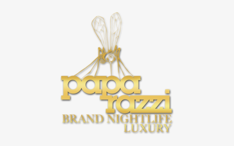 Paparazzi Light Pictures Png Images Jewellery Transparent Png