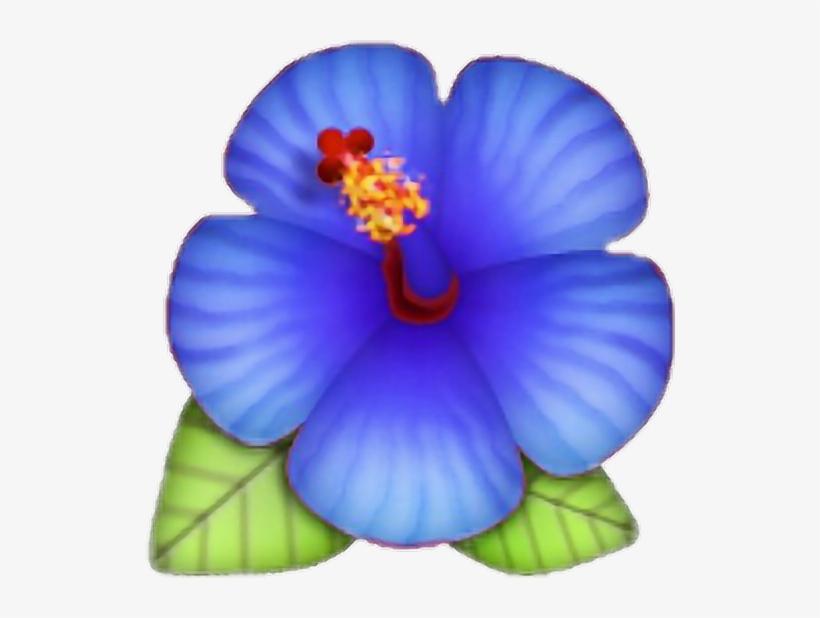 Flower Emoji Lotus Blue Rose Morelife Png Hibiscus Emoji Hibiscus