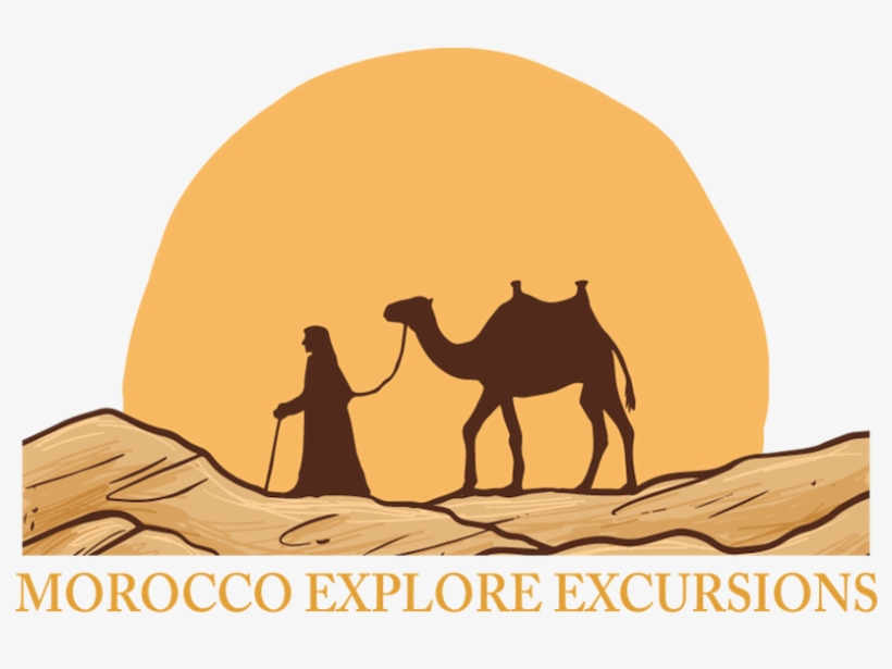 Logo - Camel Drawing In Desert Transparent PNG - 858x626 - Free
