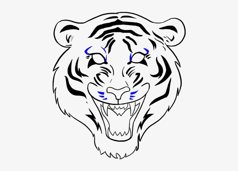 How To Draw A Tiger Face In A Few Easy Steps Tiger Face Drawing