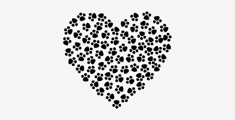 Abstract Animal Art Canine Cat Dog Paw Print Heart Clipart Transparent Png 379x340 Free Download On Nicepng Dog cat animal track paw, animal footprint, white, leaf png. abstract animal art canine cat dog