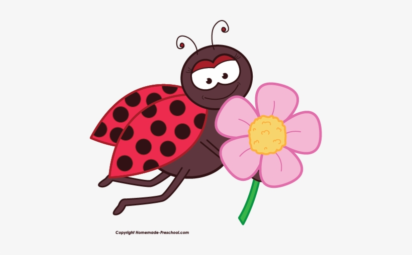 Free Ladybug Clipart - Ladybug With Flower Clipart Transparent PNG -  463x429 - Free Download On NicePNG