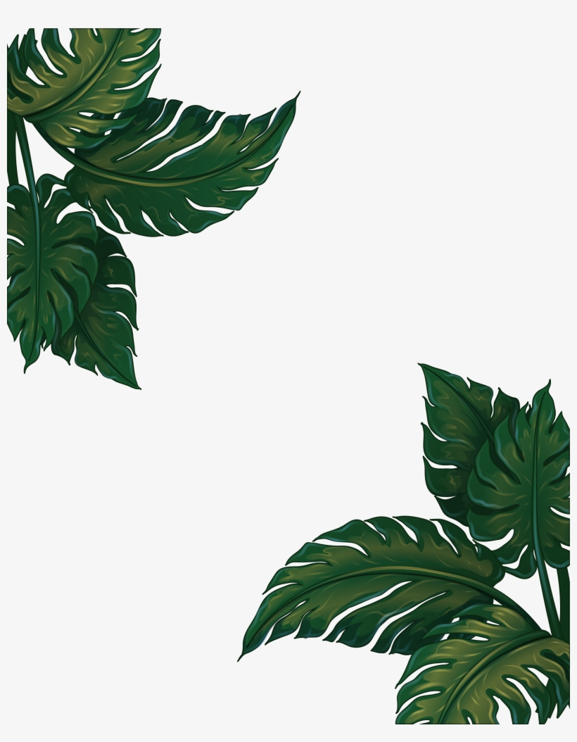 Leaf Musa Euclidean Vector Green Frame Basjoo Banana Leaves Frame Png Transparent Png 2226x2754 Free Download On Nicepng Large collections of hd transparent tropical leaves png images for free download. leaf musa euclidean vector green frame