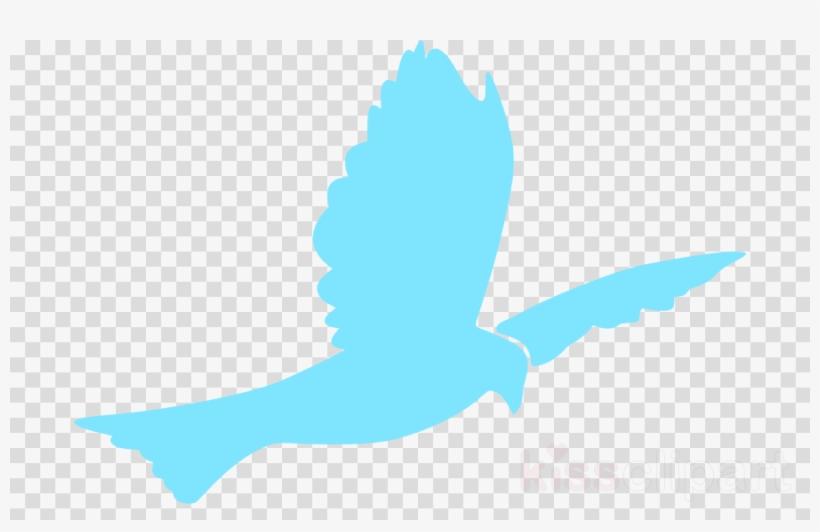 Baptism Dove Png Clipart Christian Clip Art Doves As