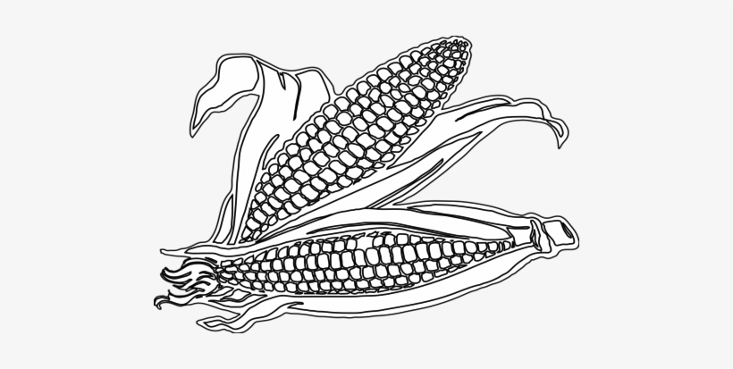 Corn Coloring Pages Printable | Coloring pages, Vegetable coloring ... | 413x820