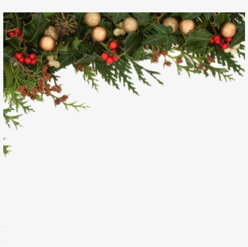Christmas Leaf Png.Christmas Border Png Christmas Border Png 71717012614