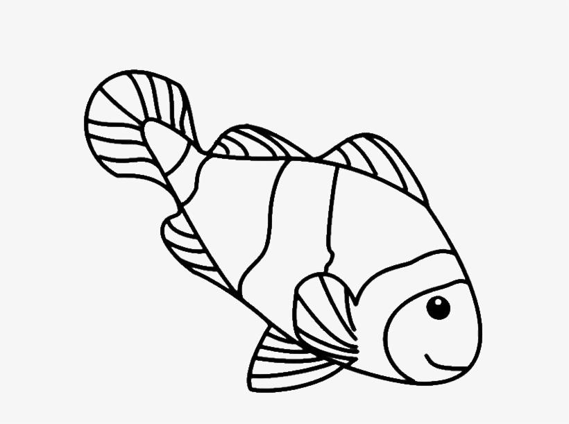 Simple Fish Drawing