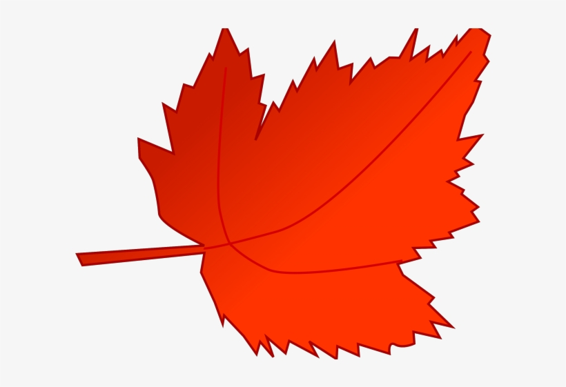 Fall Leaves Cartoon Clip Art Red Fall Leaves Transparent Png 640x480 Free Download On Nicepng