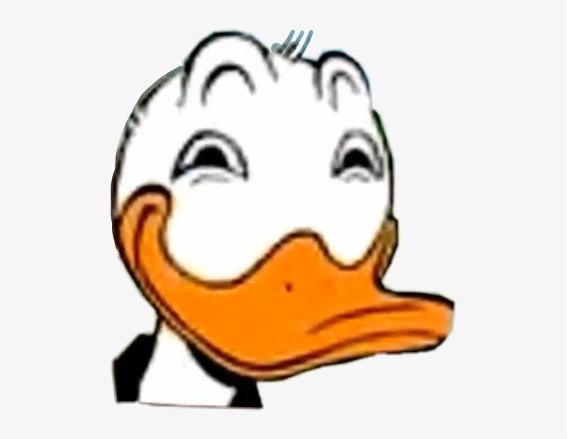 Donaldduck Disney Funny Meme Memes Freetoedit Funny Meme
