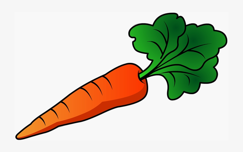 Carrots Png Leave Drawing Image Transparent Library ...