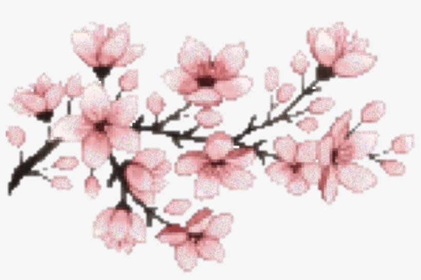 Sakura Flower Hanami Pink Aesthetic Japanese Japan Cherry Blossom