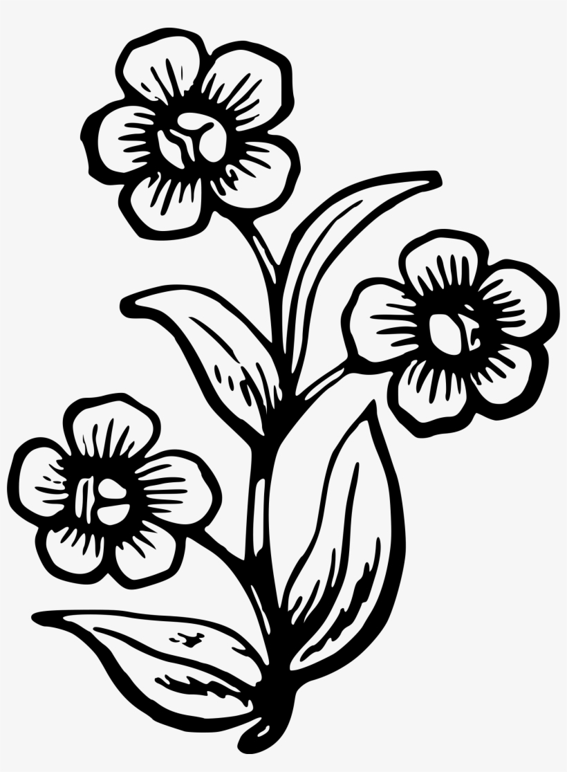 How To Draw A Wildflowers Big Pretty Flower Drawing Transparent